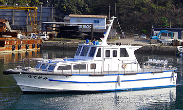 ship_tategami